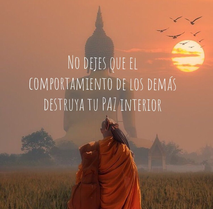 Las 100 Mejores Frases Del Dalai Lama Revolucion Personal